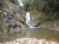 une cascade dans la jungle
