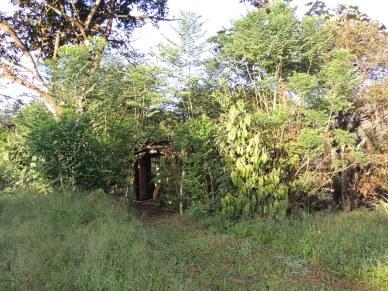 des toilettes dans la nature